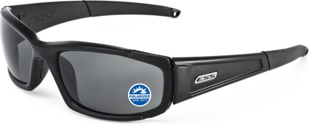 ESS CDI with Polarized Mirrored Gray Lenses