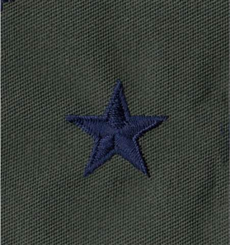 Rank Insignia - Cloth Sew On - Pair - Air Force Brig General - Subdued