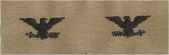 Rank Insignia - Cloth Sew On - Pair - Air Force Colonel - Desert