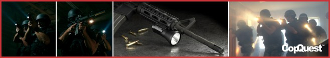Firearm mounted lights